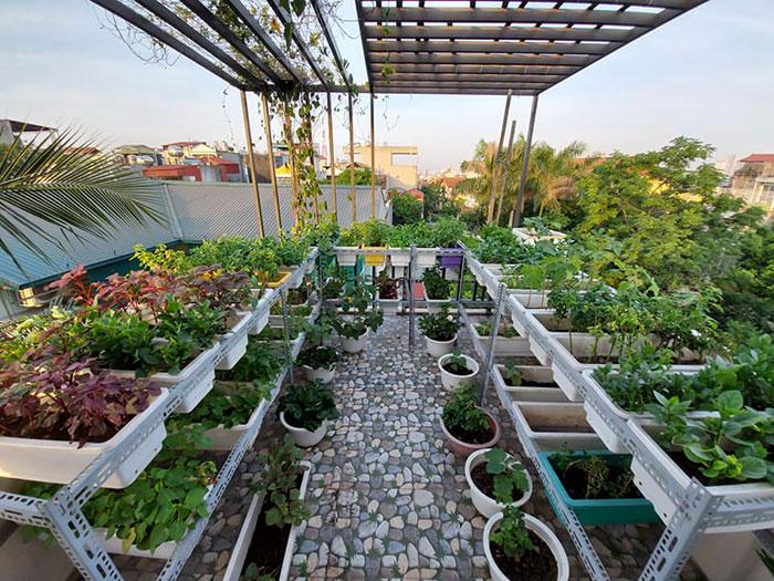 san thuong trong cay - Chống thấm sân thượng để trồng cây giá rẻ - uy tín tại TPHCM