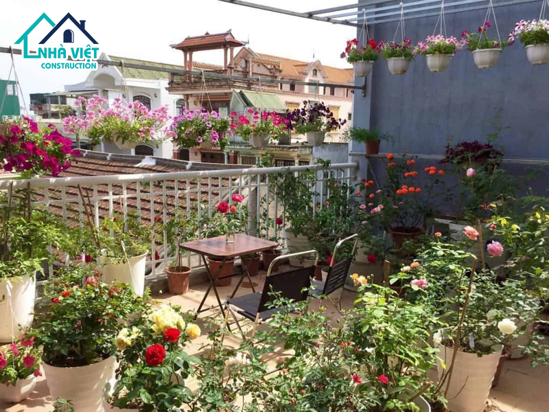 top 5 nhom cay phu hop trong tren san thuong 4 - Top 5 nhóm cây phù hợp trồng trên sân thượng